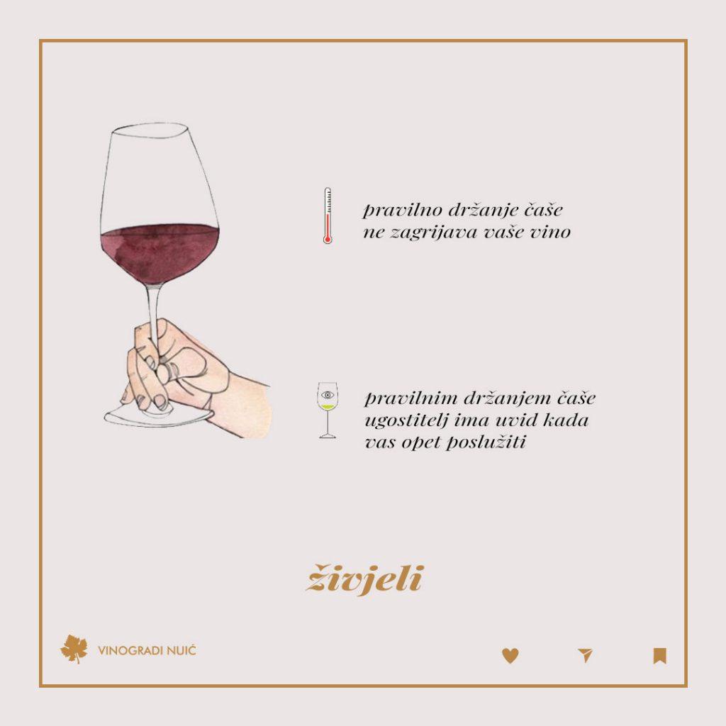 Crosell_-kako-pravilno-držati-čašu_2